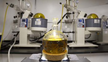 CBD Oil Extraction Methods – How Are They Different?